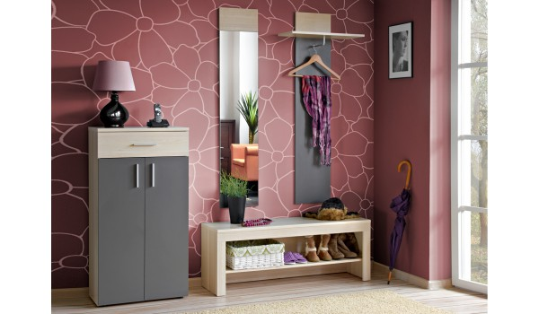 meuble d 39 entr e rangement vestiaire miroir banc pour ensemble chaussures. Black Bedroom Furniture Sets. Home Design Ideas