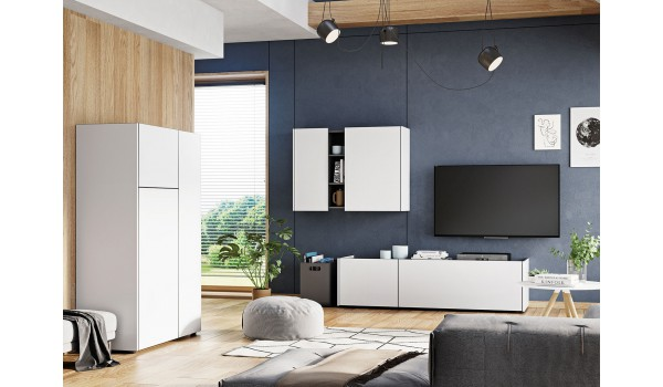 Ensemble de meuble de salon blanc & gris