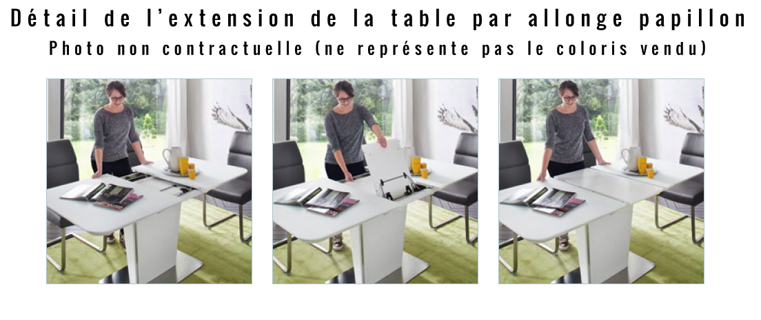 Table Salle à Manger Design Extensible